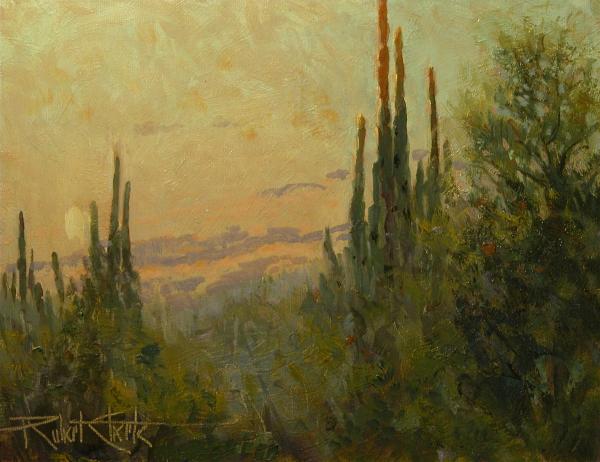 desert twlight